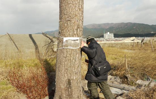 陸前高田市 一本松 201112-06