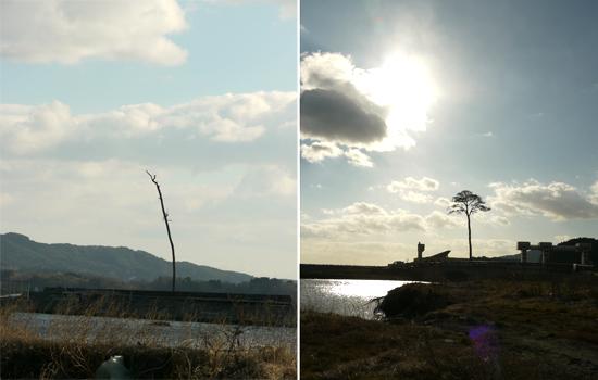 陸前高田市を訪れて-2011年12月-13
