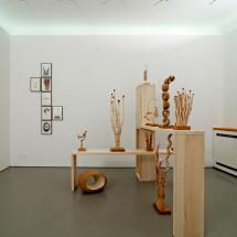 「連綿 -ununterbrochen-」展覧会風景 「ガーデン」(前景) ・ 「ドローイング」(背景), Ausstellungsansicht mit Garten (im Vordergrund) und im Hintergrund Zeichnungen ; Foto: Jürgen Baumann