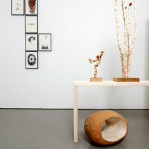 「連綿 -ununterbrochen-」展覧会風景 「ドローイング」(左)・「ガーデン」(右), Ausstellungsansicht mit Zeichnungen(links) und Garten(rechts) ; Foto: Jürgen Baumann