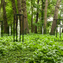 renmen Ensemble (outdoor), 2015, Variable ,Mixed Media  (Land Art Schlosspark Wagenitz) Photo : Takayuki Daikoku