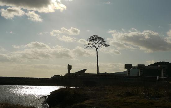 陸前高田市 一本松 201112-08